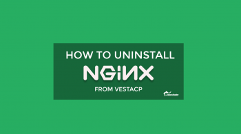 How-to-uninstall-Nginx-from-VestaCP